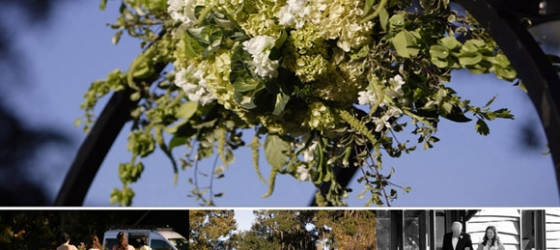 {Magnolia Plantation Carriage House} A HOT Dress & With a Side of Kale