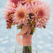 Coral Dahlias~ A Summer Favotite